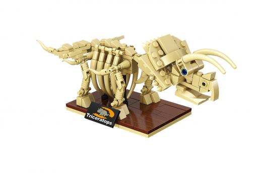 Linoos Dino Museum Triceratops LN7001