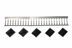 Molex Buchsen-Set 5 polig für FPV Sender 5 Stück