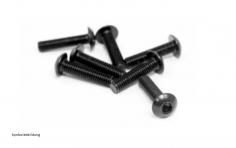 Linsenkopfschrauben M2x25 10 Stück