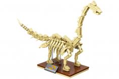 Linoos Dino Museum Brachiosaurus LN7007
